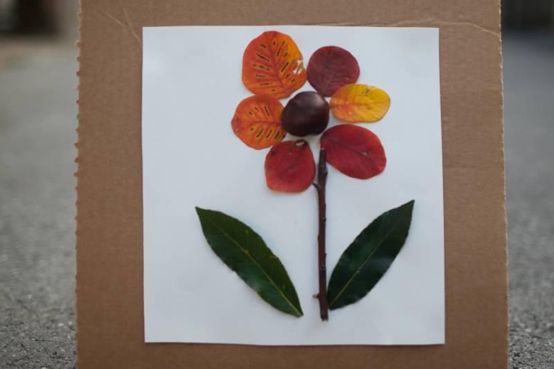 Jesensko-ustvarjanje-rozica