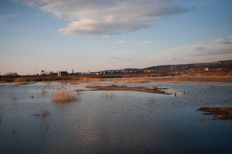 Škocjanski zatok - ideja za izlet